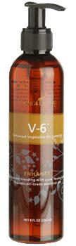 V6-550x350