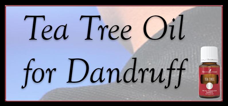 Eliminate Dandruff using Tea Tree Oil